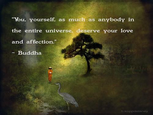 Buddha Quote 9 | by h.koppdelaney