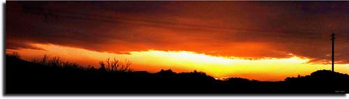 trees friends light sunset red sky italy panorama sun tree nature colors yellow skyline clouds landscape photo europe country perspective jesi eugenio iphone4 staffolo coppari mygearandme uscè