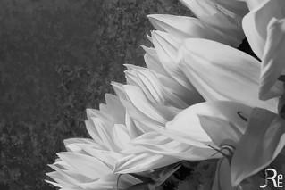 20121029-001 - unbenannt_-3