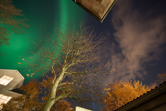 Great Display of Lights over Reykjavík