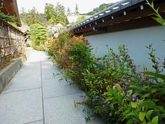 2012/10/27 (土) - 13:41 - 円覚寺 - 松嶺院