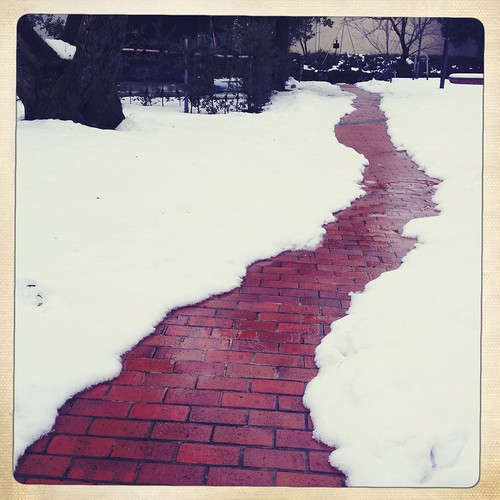 Brick road | by utahca