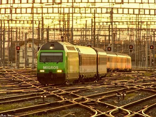 sbb sbbcffffs re460 class460 slm locomotive aseabrownboveri train transport werbelok travel sunset publictransport trainstation zürich zürichhb svájc switzerland euopa panasonic dmc lz20 lumix