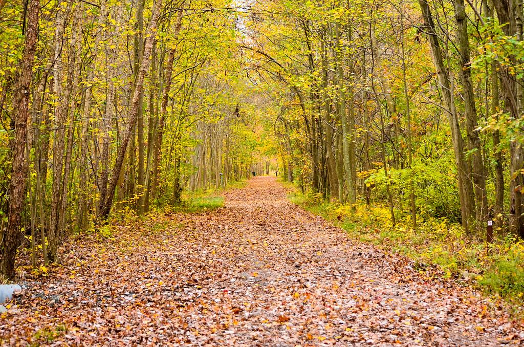 Long Trail ahead !   Shruti   Flickr