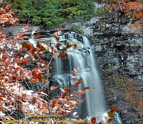upstateny waterfalls lakeontario salmonriverfalls