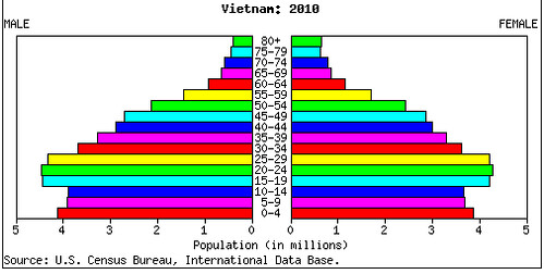 Demographic pyramid