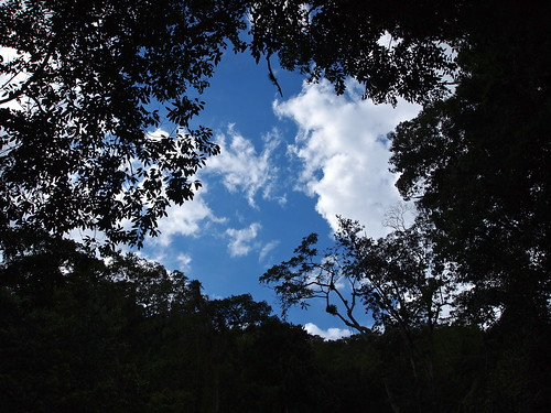 sky clouds scenery jamaica caribbean canopy ipswich stelizabeth ysfalls westindies breadnuthills