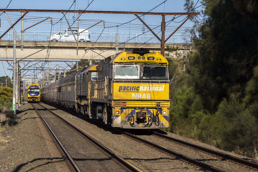 4SA8 NR48-8183 Indian Pacific Werro by Chris Tonkin
