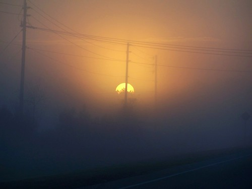 misty sunrise foggy