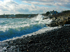 Atlantic Coast, Biddeford Pool, Maine