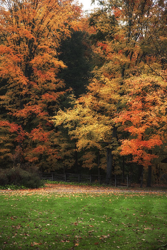 Fall Time | by wsquared photography