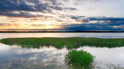 copyright landscape nikon sigma lakeland carloscintron