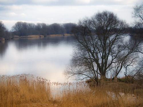 river germany deutschland hamburg fluss landschaft elbe ladscape norddeutschland suederelbe