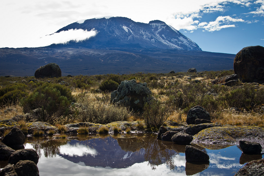 Mt Kilimanjaro reflection