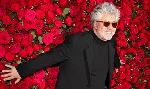 2 moma film benefit pedro almodovar | by Divine Home Decor
