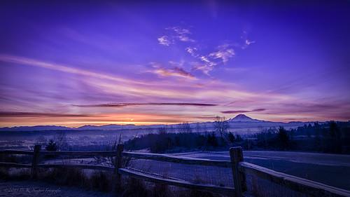 blue winter mist cold fog sunrise fence washington kent nikon frost unitedstates pacificnorthwest sunburst seatac mtrainier hdr cascademountains tonemapped tokina1116f28 d5100 promotecontrol nikhdrefexpro2 drneupert