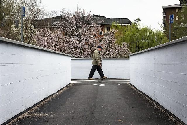 Springtime Walking