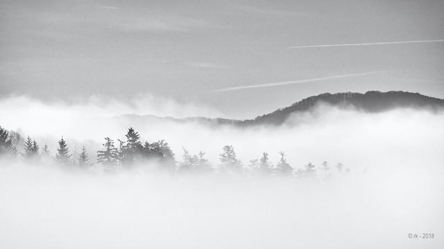 Morning Fog... (New Views II)