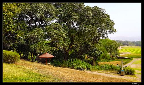 harrypwt abuja golf grass green landscape trees samsungs7 s7 nigeria africa