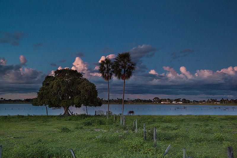 Fazenda Rodeio - Estrada Parque - Pantanal da Nhecolândia, MS