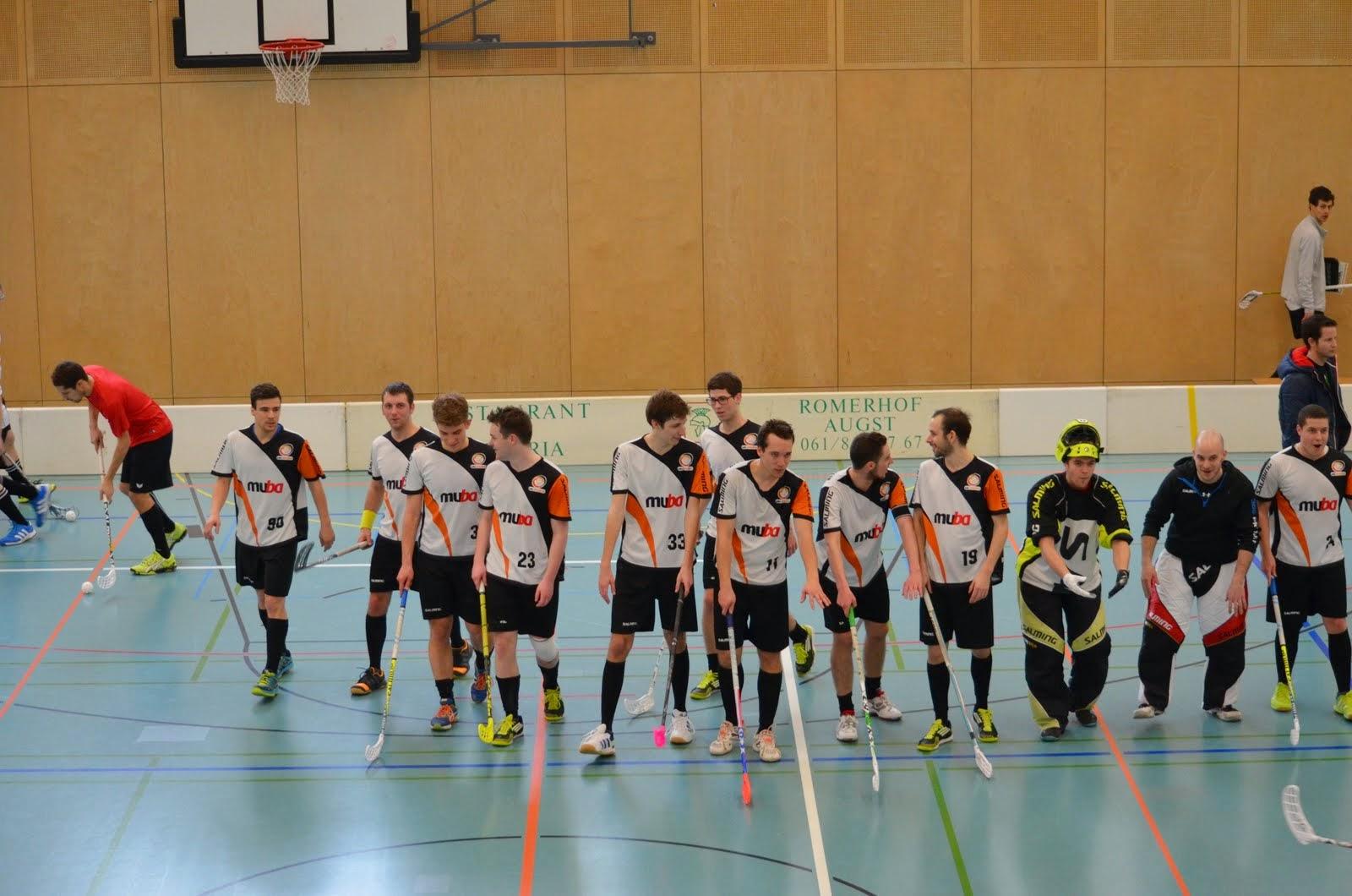Herren 1 (Heimrunde 2014/2015)