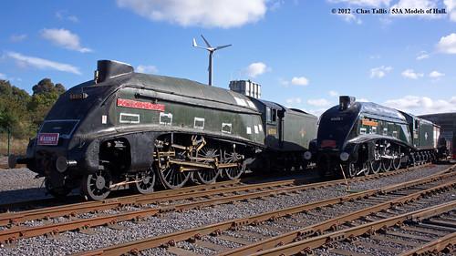 train railway steam a4 nrm countydurham britishrailways lner 462 dwightdeisenhower shildon gresley dominionofcanada 60010 60008
