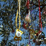 Schnuller am Baum im Louisenpark