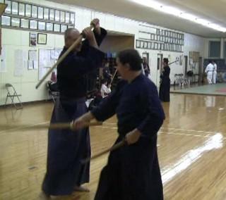 Practicing Kasumi Shinto-ryu | by Mark Tankosich