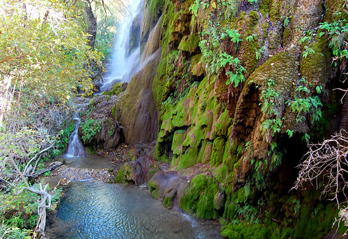 Colorado Bend State Park | by The Wild Roam Free