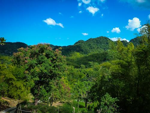 island jamaica caribbean mayfieldfalls saintjamesparish