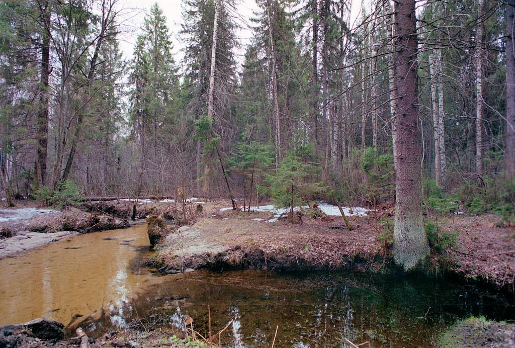 creek-25