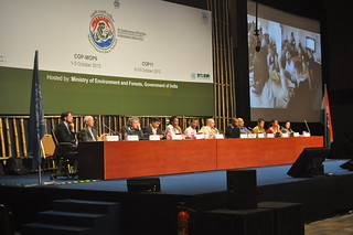WWViews at COP11 - Side Event | by WWViews