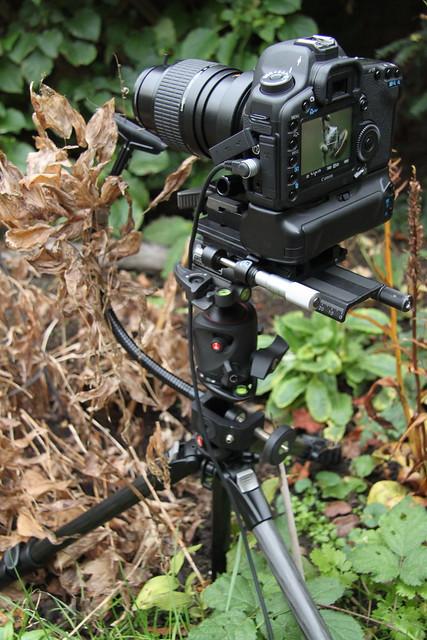 Field setup 1