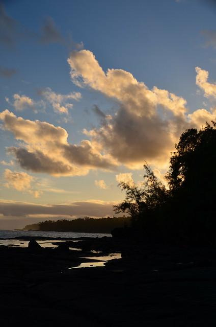 Puna coast (DSC_4239)
