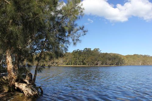 travel nature nationalpark australia nsw myalllakes