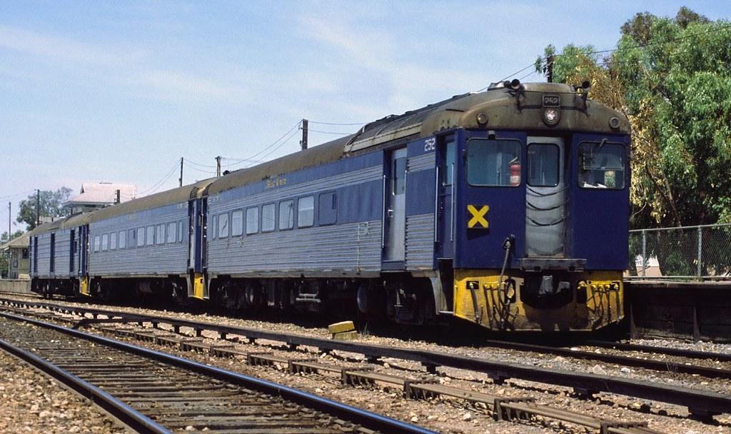 Bluebird Train, Tailem Bend by Ryan Smith