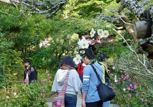 2012/10/27 (土) - 14:54 - 円覚寺 - 黄梅院