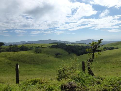 Parque Nacional Palo Verde - onderweg naar Monteverde