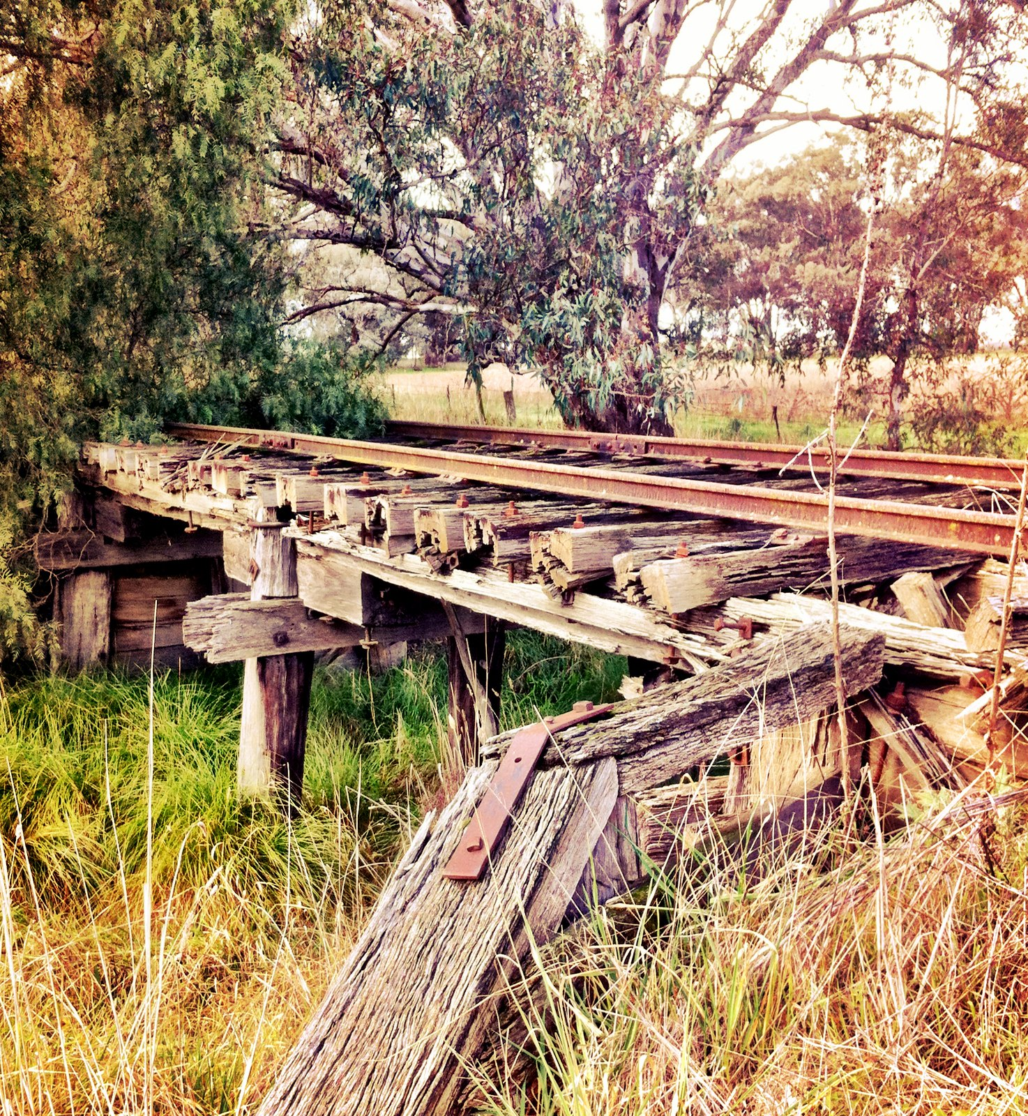 Tumbarumba Branch line by Cutto