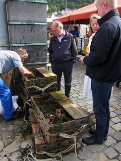 Bergen fish market   by Sean Munson