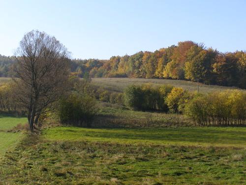 autumn nature field landscape scenery view poland polska natura pole widok jesień przyroda jesien pomorze krajobraz pomorskie sceneria czapielsk