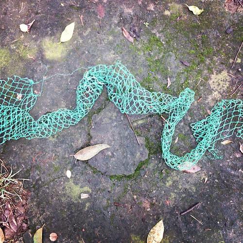 snake   by arnoguigui