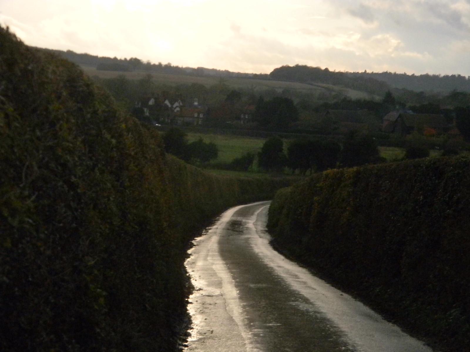 road and hedge Henley Circlular via Hambleden (short)