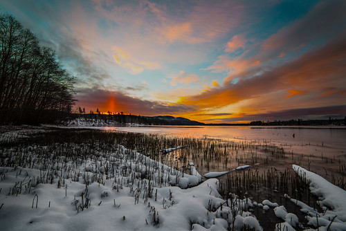 light sky snow cold color ice nature water norway clouds forest sunrise nikon day daybreak d800 maridalen samyang marilalsvannet pwwinter