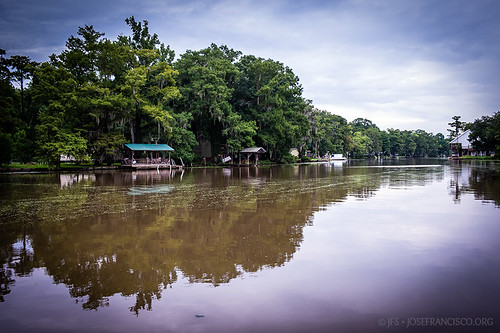 usa río river us nikon louisiana pantano swamp nikkor wetland d4 humedal maurepas amiteriver livingstonparish 2470mmf28g headofisland 201207216307