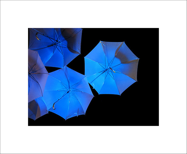 The collapsible canopy X