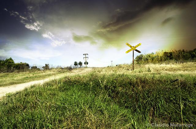 Crossing / Cruzando