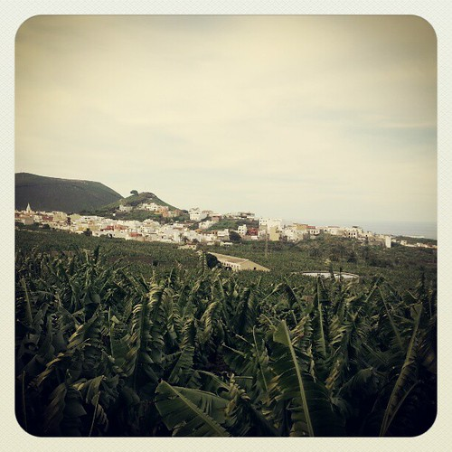Desde la Hacienda de Daute y hablando de Gonzalo Yanes de Daute (1502). #cuentos2012 | by Pedro Baez Diaz @pedrobaezdiaz