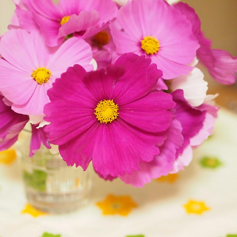 花は癒し by Noël Café