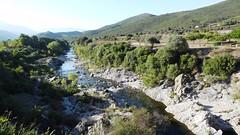 Река по дороге в Corte